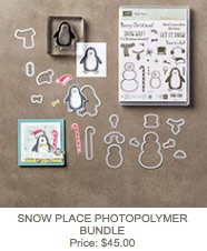 Snow place bundle