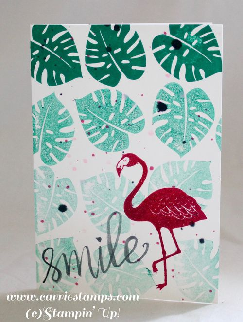 Pop of paradise note card