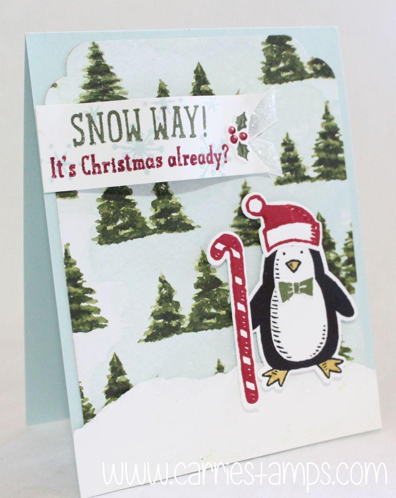 Snow place penguin