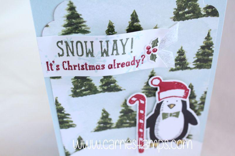 Snow place penguin 2