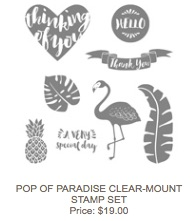 Pop of paradise