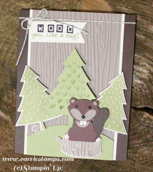 Foxy friends beaver2