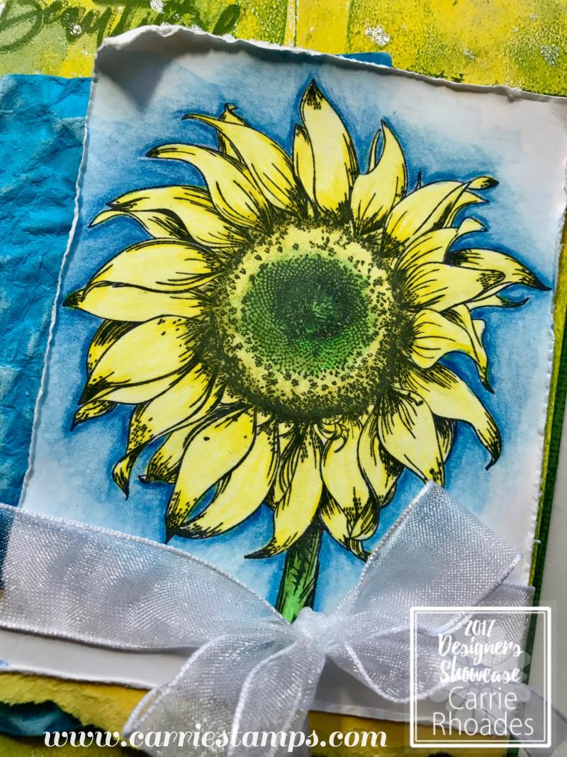 Hello Sunflower 3
