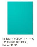 Bermuda cs