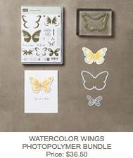 Watercolor wings bundle
