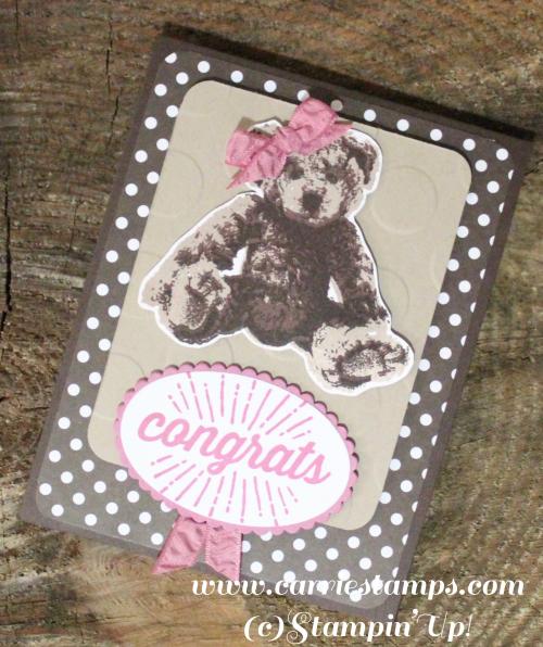 Sweet baby bear 2