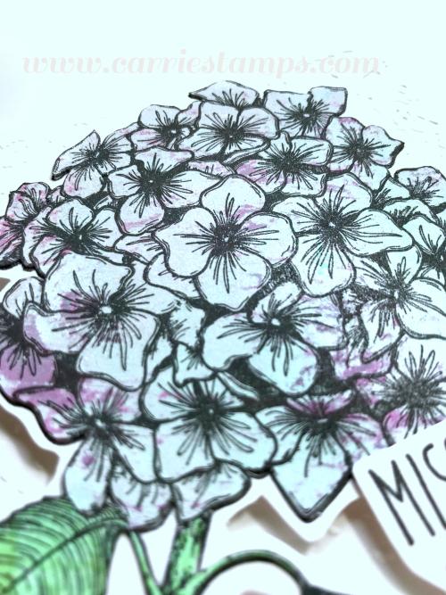 Bloom burst pieced 3