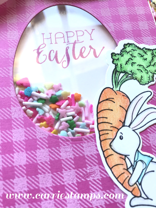 Easter Sprinkle Shaker Card 2