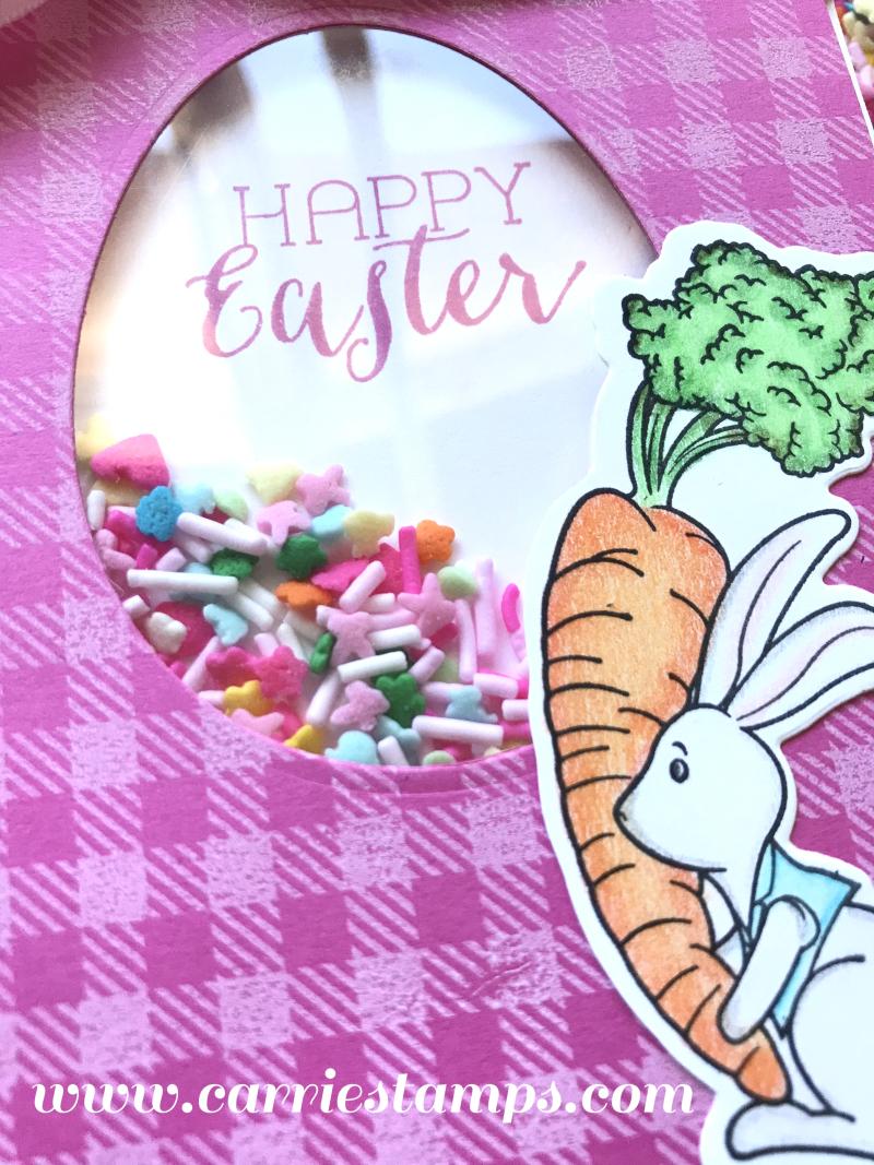 Easter Sprinkle Shaker Card 2