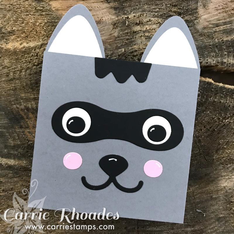 Create a pal raccoon