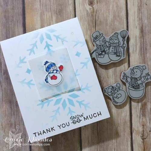TY Snow Much 4