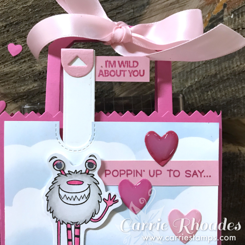 Wild about you pop up bag 2