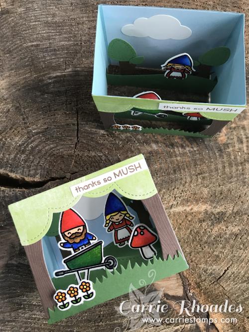 Oh Gnome Shadow Box 1