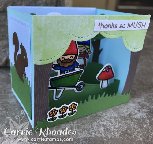 Oh gnome shadwo Box 6