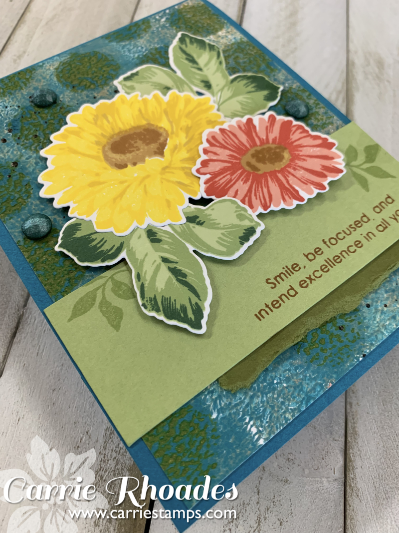 Sunflower daisy 1