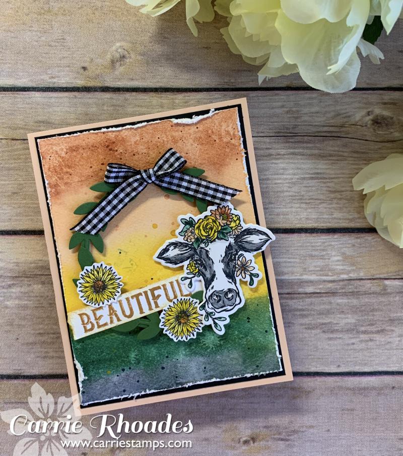 SketchBox Cow card 1