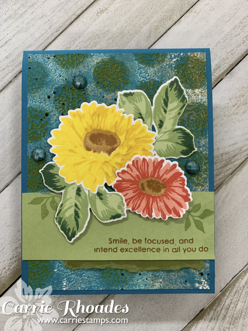 Sunflower daisy 3