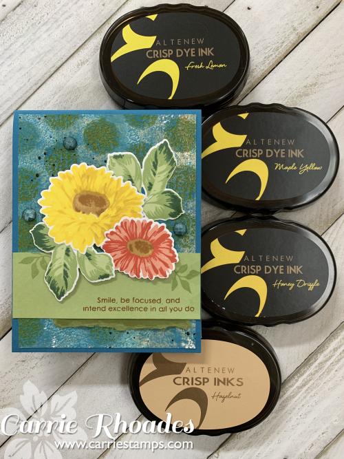 Sunflower daisy 4