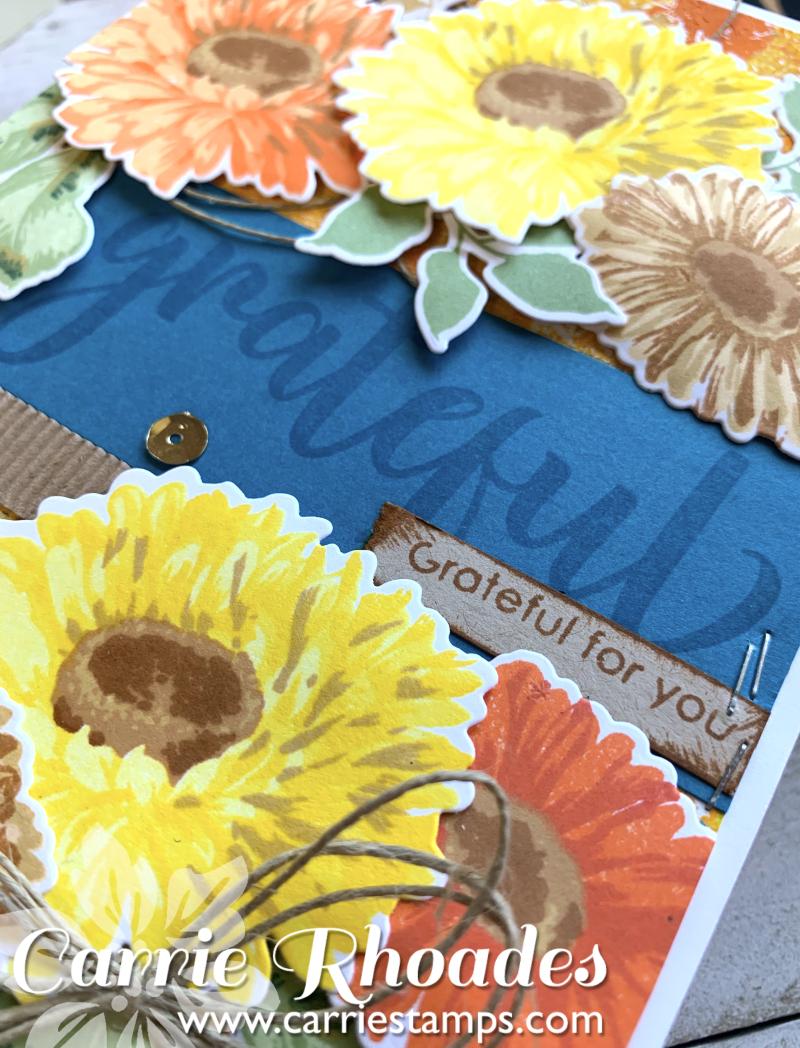 Large Sunflower DAisy card 4