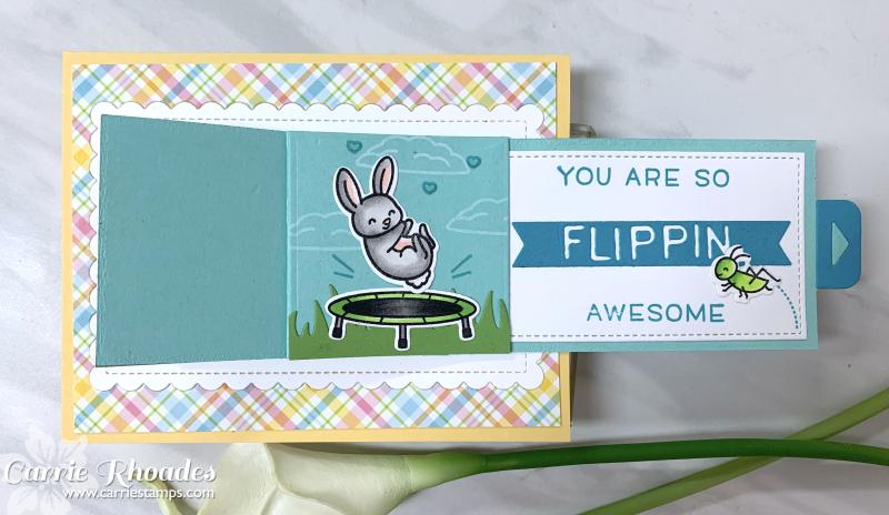 Flippin high five 8