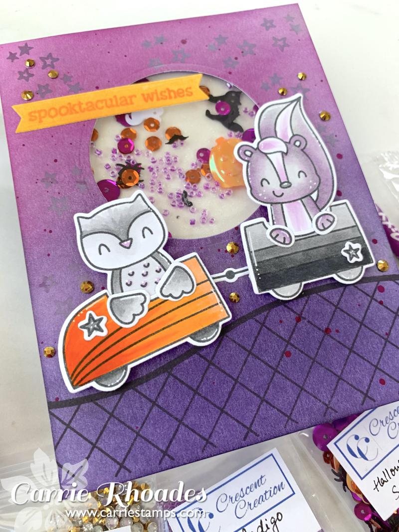 Peek a boo coaster 4