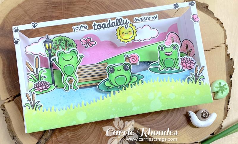 Froggy shadow box 1
