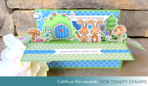 Bunny Burrow Wide Box 1