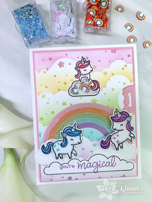 Unicorn picnic shaker 3