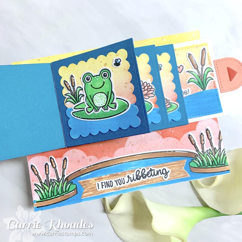 Flippin froggie 2