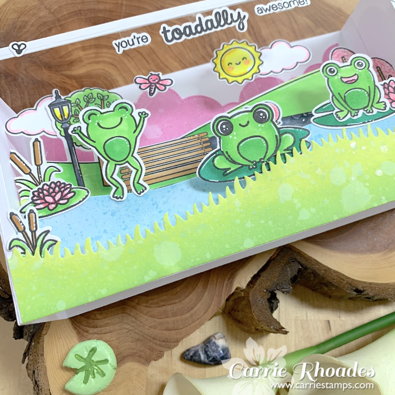 Froggy Slimline Shadow Box 2