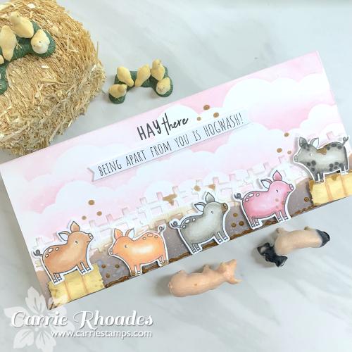 Slimline pigs 1