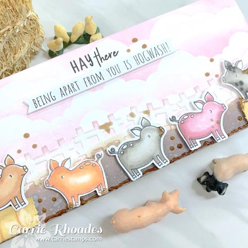 Slimline pigs 2