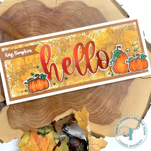 Hey pumpkin 1