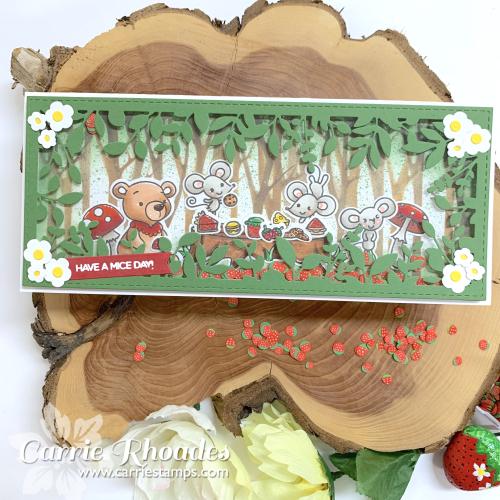 Teddy bear picnic 3